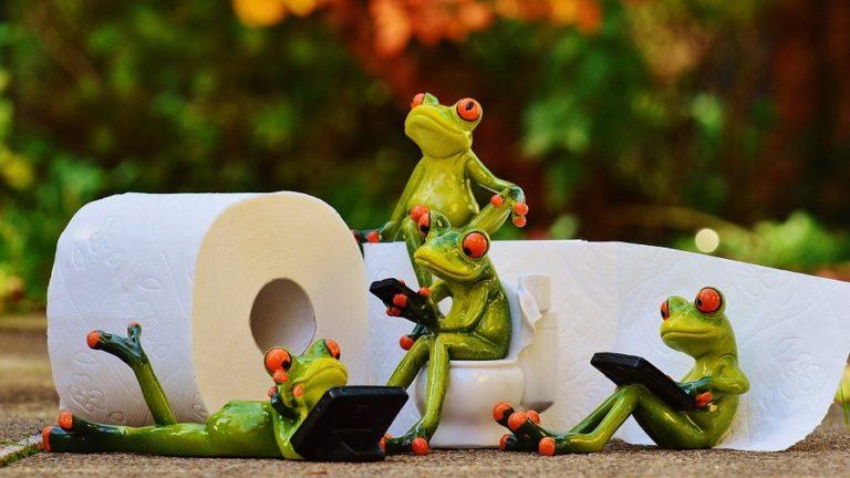 frog_social_media
